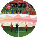 Middencirkeldoek, FC Twente, Twente, Vlaggen